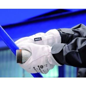 DUAL WARM 1 VE = 12 Paar  Kälteschutz-Handschuh (w